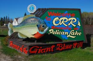 Going fishin minnesota s giant fish for Morey s fish